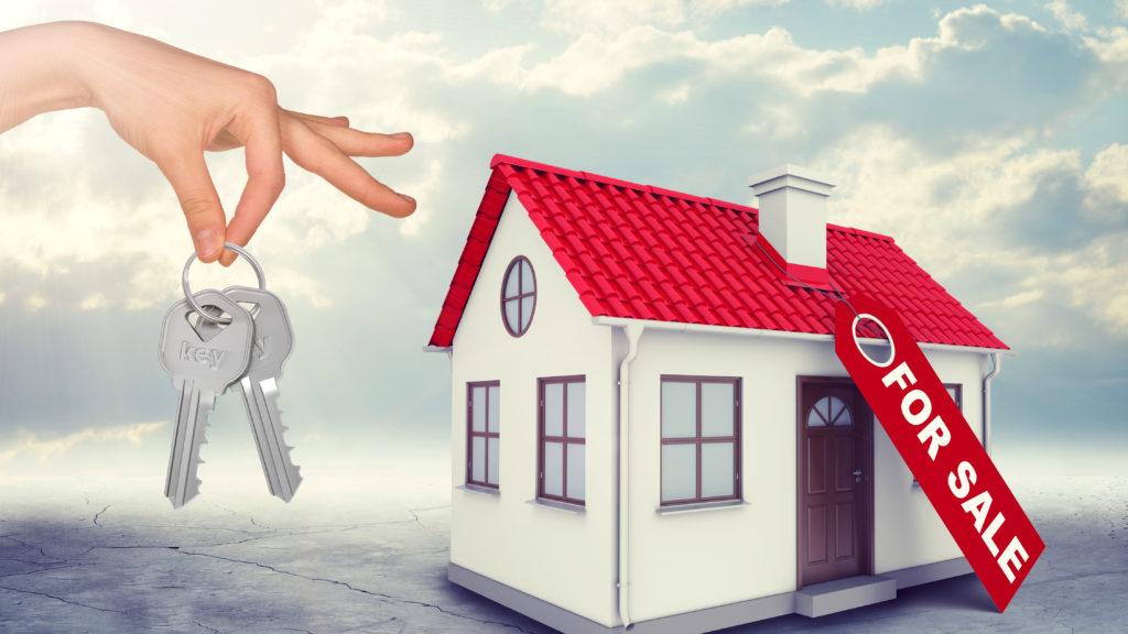 Real Estate Professional Status | Table 31